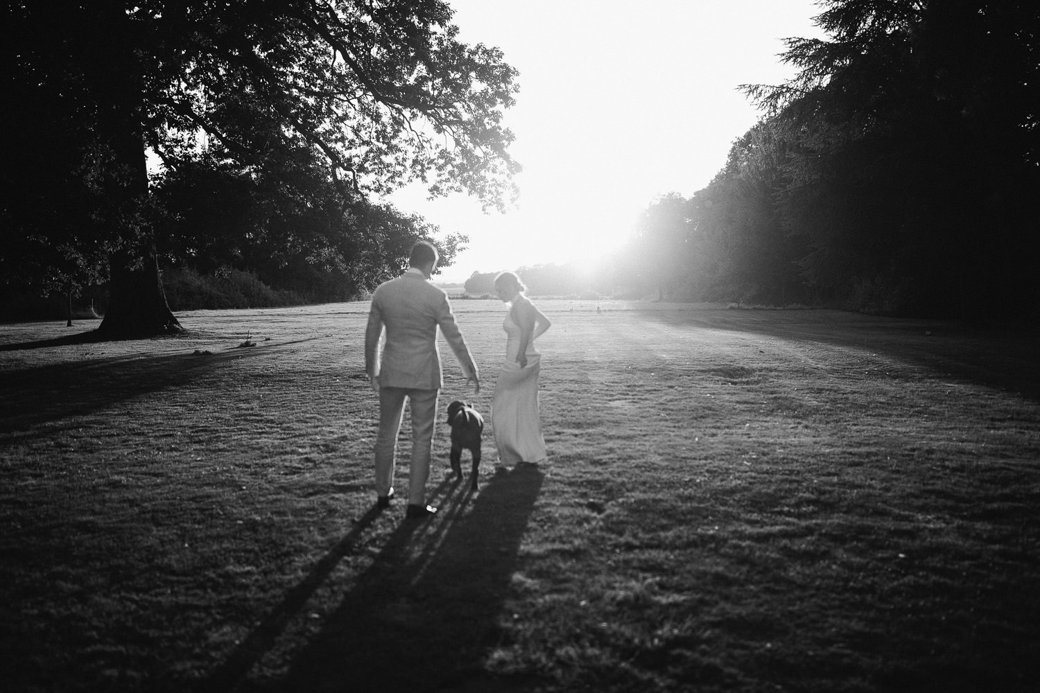 bride and groom walking into sunset with black dog